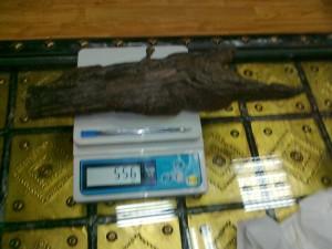 India-assam-sinking-agarwood-556gram